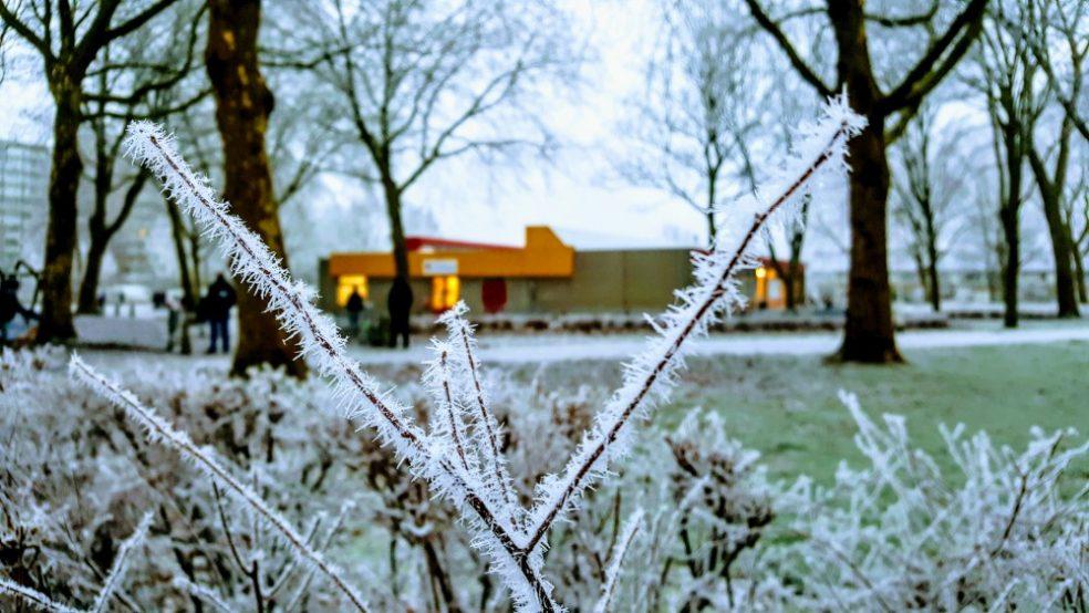 Winter op christelijke basisschool de Schanskorf in Zoetermeer (Meerzicht)